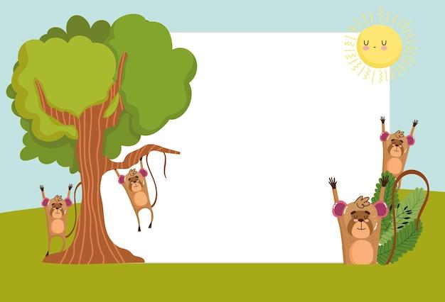 동물 원숭이 나무 빈