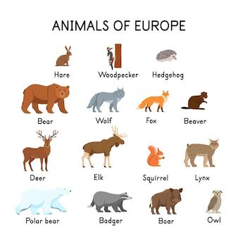 ヨーロッパの動物うさぎキツツキハリネズミクマオオカミキツネビーバー鹿エルクリスリンクスホッキョクグマフクロウイノシシアナグマ白い背景フラット漫画