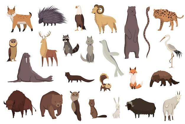 Животные северной америки. коллекция природы фауны. географическая местная фауна. млекопитающие, живущие на континенте. векторные иллюстрации в детском стиле