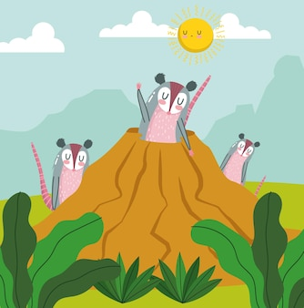 Animals opossum family burrow cartoon