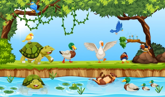 Animals in a pond scene