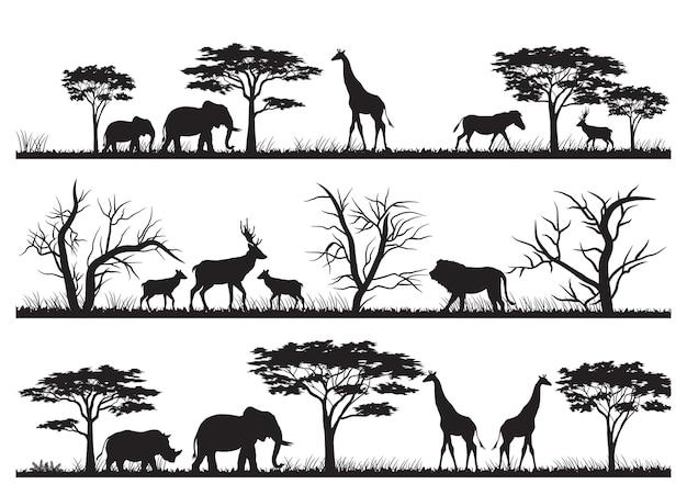 Animals silhouette at the savannah