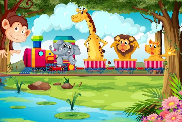 Animals and train