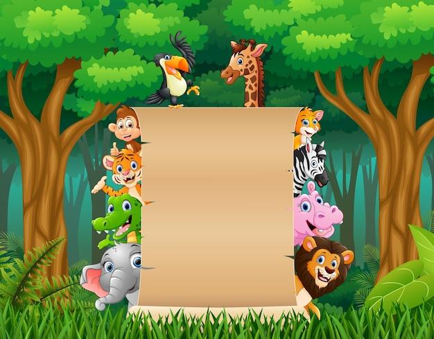 Животные с пустой табличкой