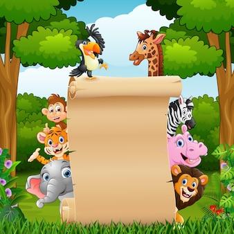 Животные с пустой бумажный знак в лесу