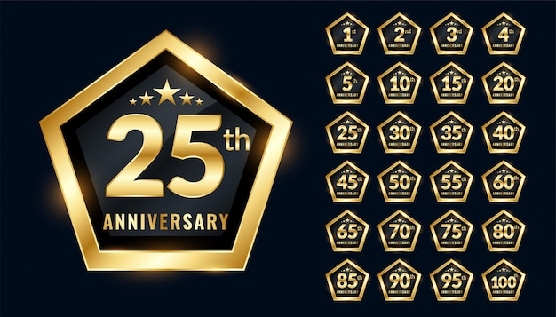 Anniversary labels set in premium emblem style design