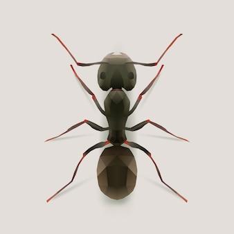 Ant, реалистичная иллюстрация многоугольника