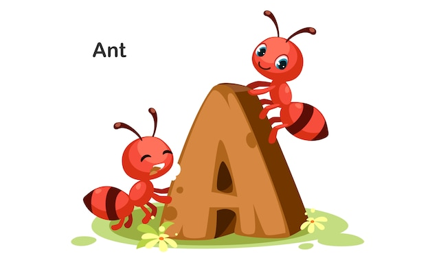 A for ant