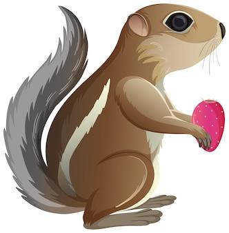 흰색 배경에 고립 된 만화 스타일의 선인장을 들고 영양 다람쥐