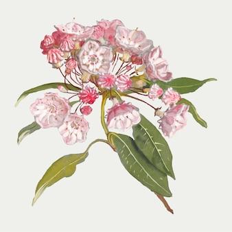 サミュエル・コールマンのアートワークからリミックスされたアンティークの花のデザイン要素