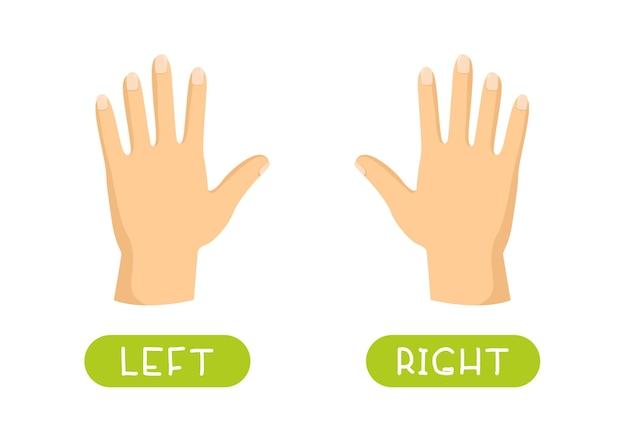 반의어 개념, left 및 right. 반대와 교육 단어 카드. 영어 공부를위한 플래시 카드.