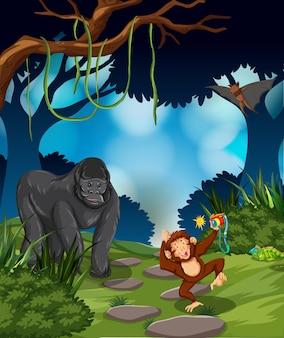 열대 우림에서 원숭이