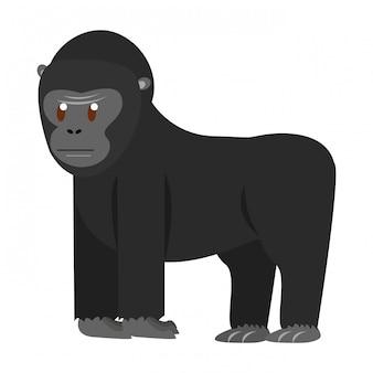 Ape wild animal