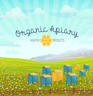 Apiary in alpine meadows mountains