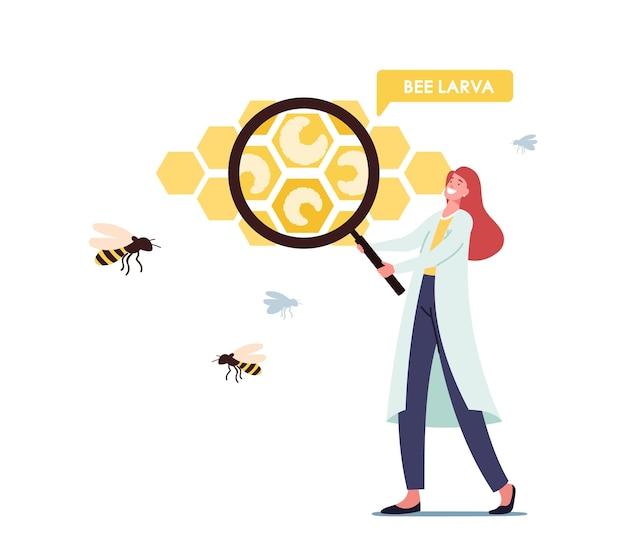 양봉장, 생물학 과학 개념입니다. 거대한 벌집 세포에서 꿀벌 애벌레를 학습하는 거대한 돋보기가 있는 흰색 의료 실험복을 입은 작은 과학자 여성 캐릭터. 만화 벡터 일러스트 레이 션
