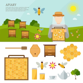 Apiary vector flat illustrations