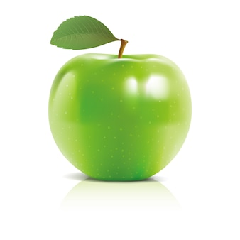 Apple 3d vector design illustration template