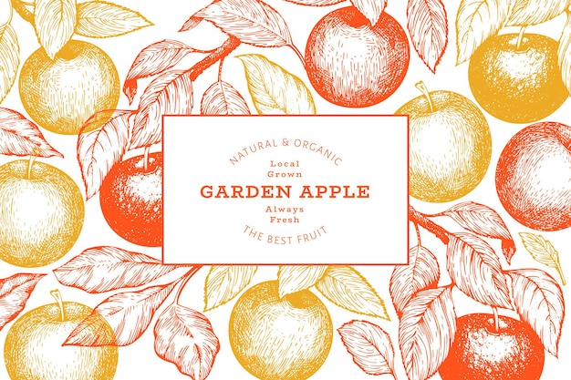 Apple branch. hand drawn garden fruit. engraved style fruit retro botanical background.