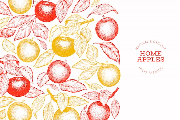 Apple branch  template. hand drawn  garden fruit illustration. engraved style fruit retro botanical banner.