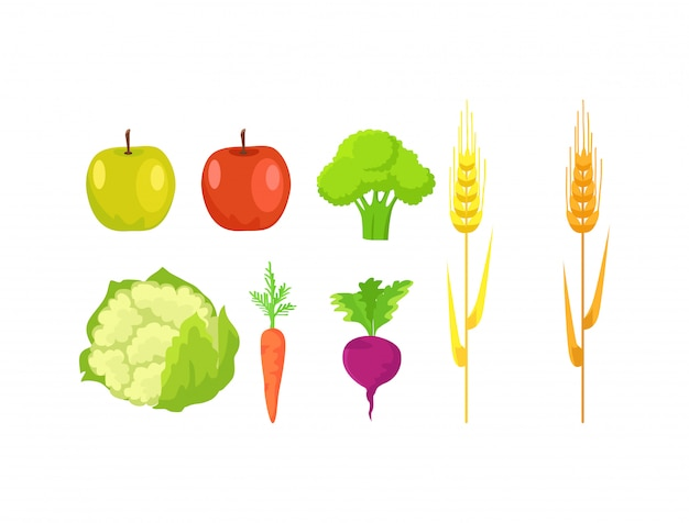 Apple, broccoli, cauliflower, carrot, radish wheat