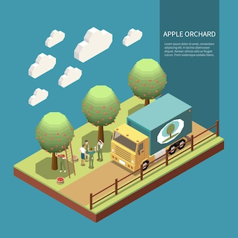 Apple orchard in garden isometric composition with farmers engaged in harvesting of fruits and loading into truck  illustration