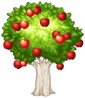 白い背景で隔離のリンゴの木
