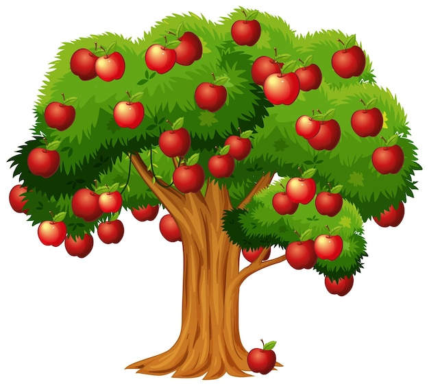 사과 나무 흰색 배경에 고립