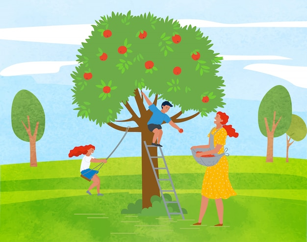Apple tree woman picking fruits kid playing