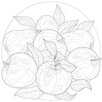 リンゴとナシ。果物。子供と大人のための塗り絵の抗ストレス。禅もつれスタイル。白黒の描画