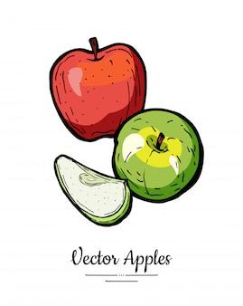 Яблоки вектор изолированы. яблоки целые нарезанные. красные зеленые фрукты рисованной иллюстрации