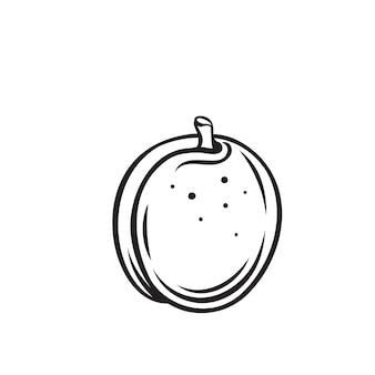 アプリコットフルーツのアウトラインアイコン、モノクロイラストを描画します。健康的な栄養、有機食品、ベジタリアン製品。