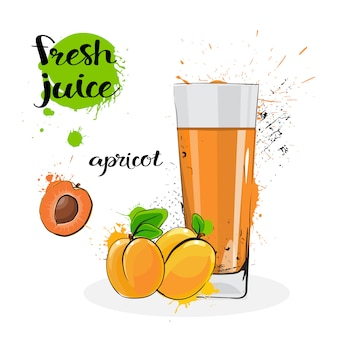 Apricot juice fresh hand drawn watercolor fruits and glass on white background
