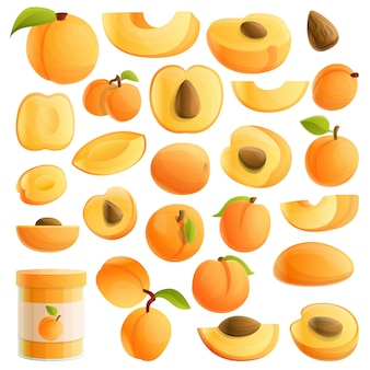 Apricot set, cartoon style