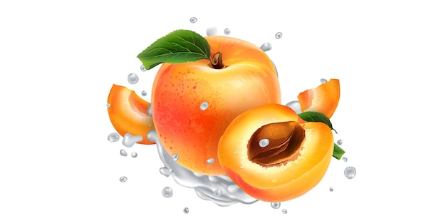 Apricots in splashes of yogurt or milk.