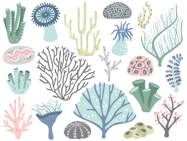 Aquarium corals and seaweed. marine ocean coral flora, decor underwater seaweeds and different water plants cartoon vector set