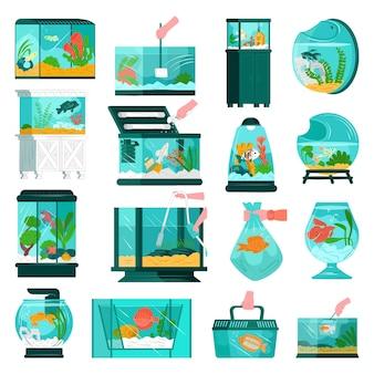 Aquarium fish and accessories at home set