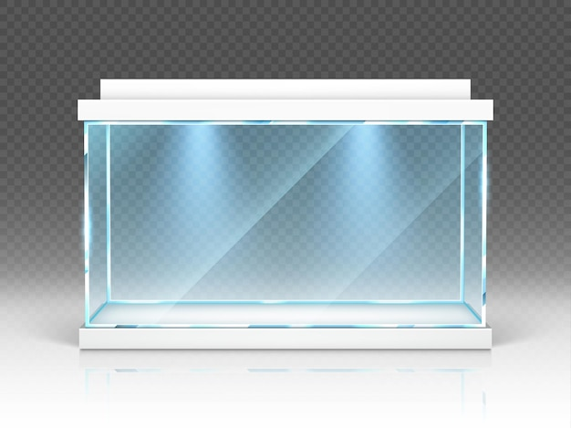 Aquarium glass box, terrarium with backlight on transparent