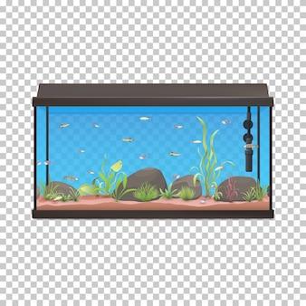 Иллюстрация аквариума с камнями рыб