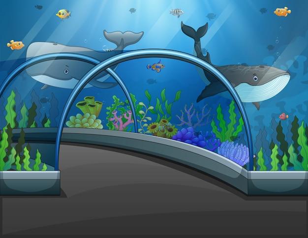 Aquarium scene with sea animals illustration
