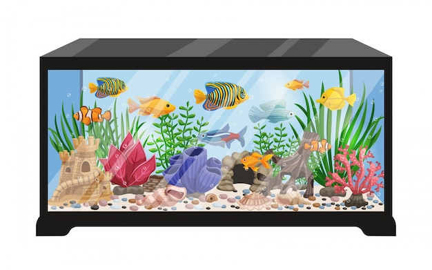 Aquarium tank cartoon illustration