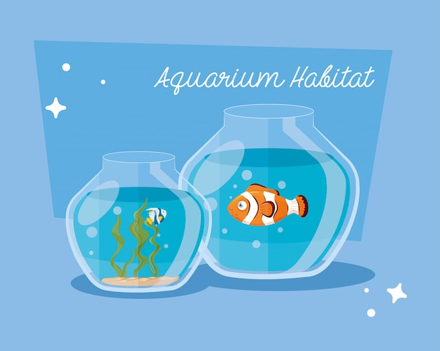 Аквариумы с рыбками на воде, аквариумы с морскими питомцами