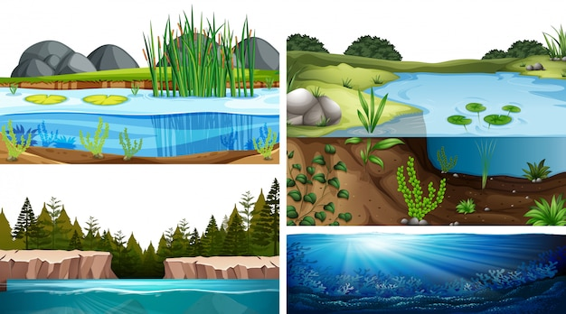 Aquatic ecosystems with pond, lake, river