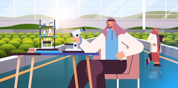 ラボ農業で化学実験を行う植物科学者を研究しているアラブの農業エンジニアスマート農業の概念現代の温室内部水平ベクトル図