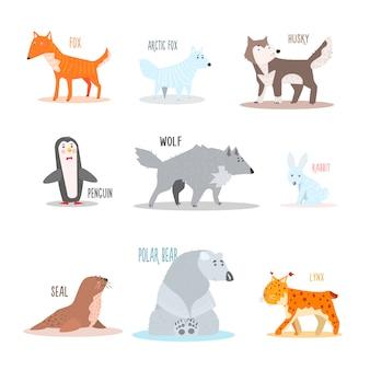 北極および南極の動物、ペンギン。図