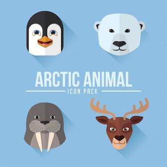 北極動物フラットアイコンパック