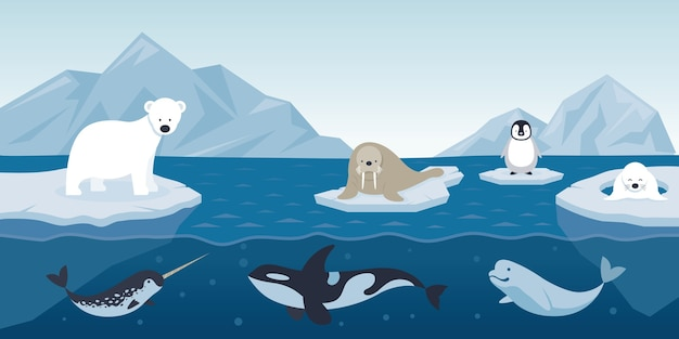Arctic animals characters illustration