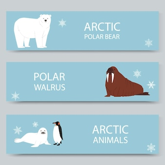 Arctic animals and north pole cartoon banners set