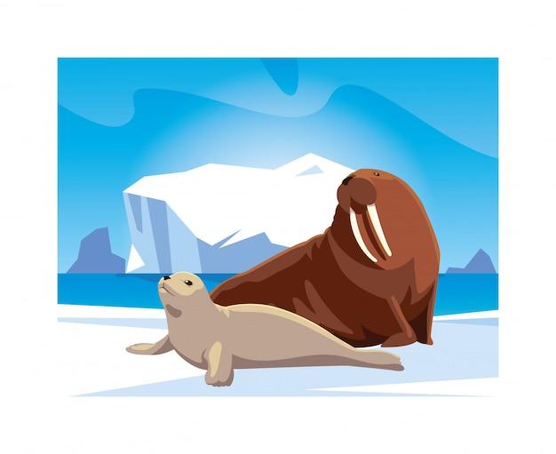 Arctic animals at the north pole