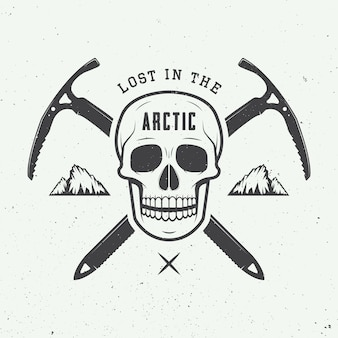 Arctic skull
