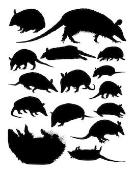 Armadillos animal silhouettes.